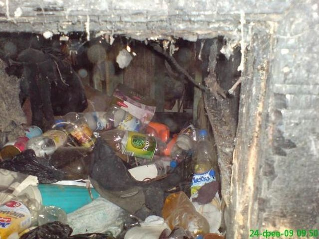 World's most dirty apartment (5 photos)