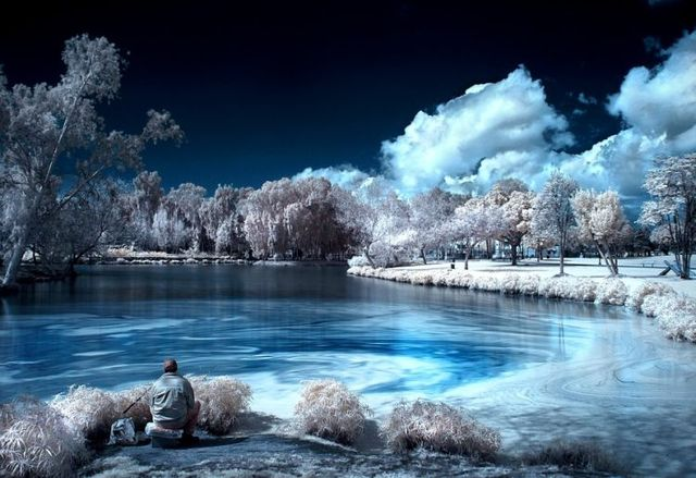 Amazing infrared pictures (38 pics)
