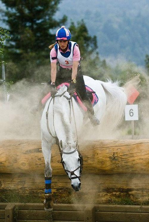 Loser horsewoman (6 pics)