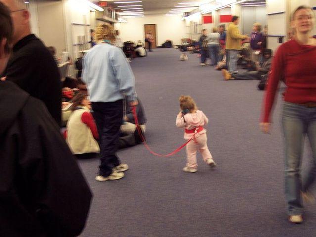 Lesson for parents. Children on a leash (35 pics)