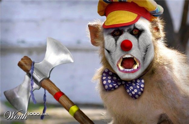 Great photomontage – animals-clowns (43 pics)