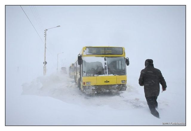 Public transport where it's very cold (20 pics)