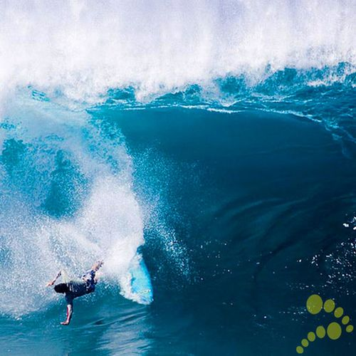 Great gallery of Surfer wipe outs (30 pics + 1 video)