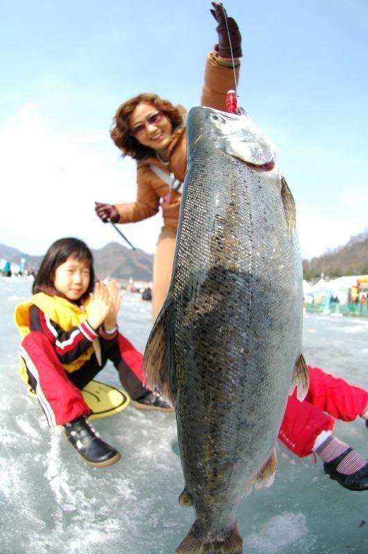 Ice Fishing Festival In South Korea 13 Pics Izismile Com