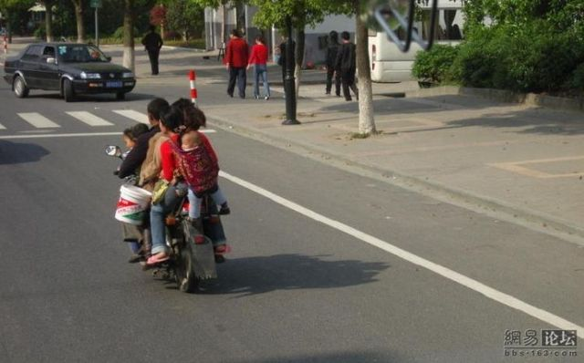 Transport for the whole family (8 pics)