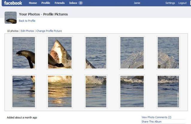 Daily picdump (124 pics)