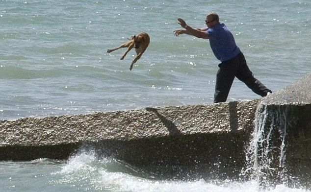 Shocking pictures of men mistreating his dogs (7 pics)