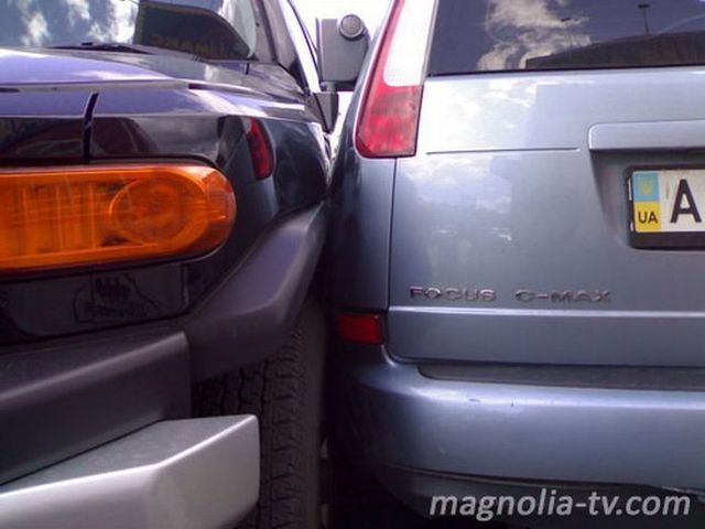 Another master of parking (7 pics)