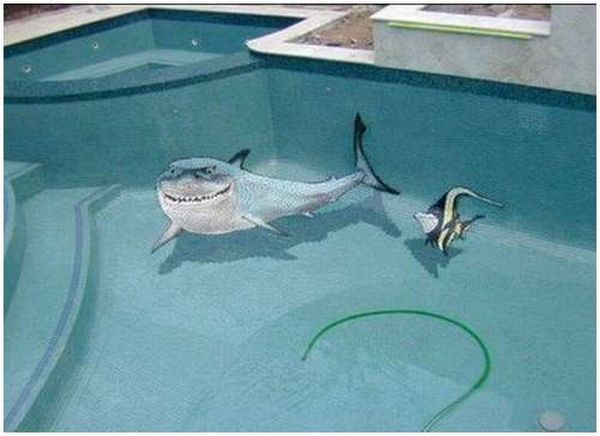 Great 3D swimming pool!! (9 pics)