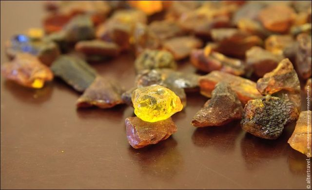 Excursion to the Amber Factory (29 photos)