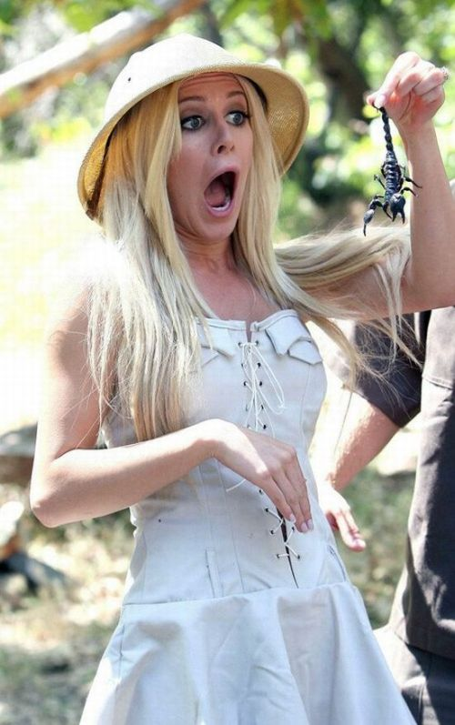 Heidi Montag, her dude and bunch of creepy stuff (8 pics)