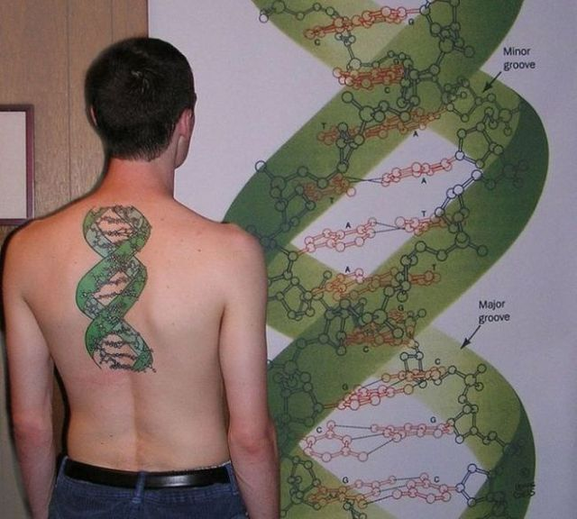 Scientific tattoos 62 photos