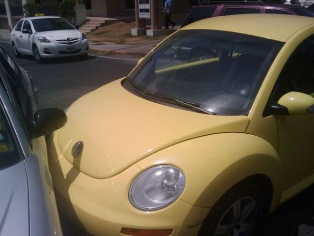 Hyundai vs. Beetle (4 pics)