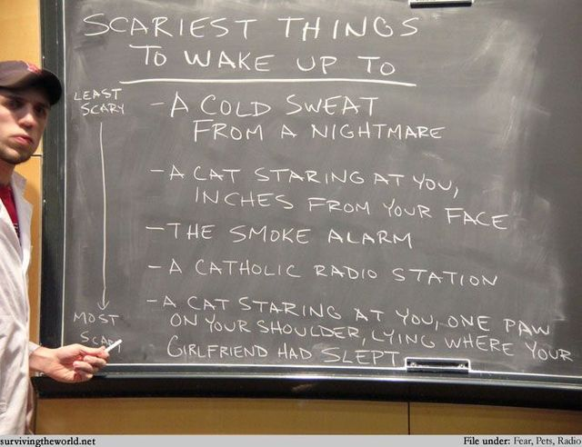 Life lessons on blackboard (40 pics)