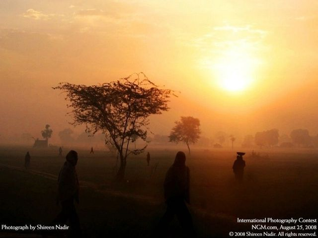 The best of International Photography Contest (50 pics)
