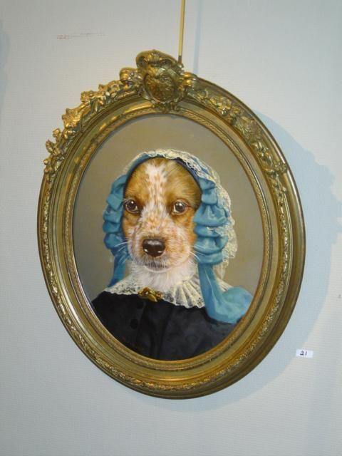 A dog world (44 pics)