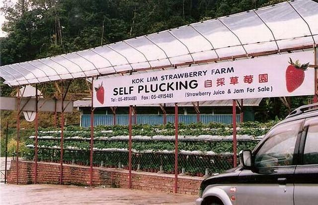 Weird signs. Part 2 (44 pics)