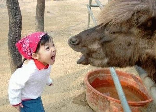 Funny kids (53 photos)