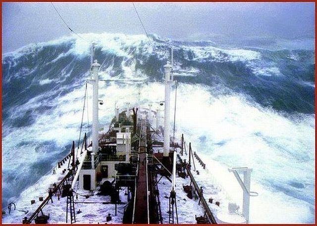 Ships vs nature (61 pics)