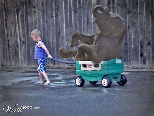 Funny photomontage - Hercules (51 pics)