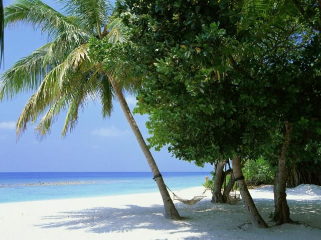 Beaches in the Maldives (40 pics)