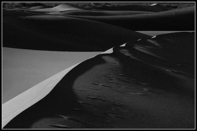 The beauty of the desert (42 pics)