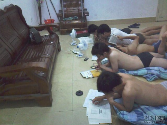 Preparations for exams (6 pics)
