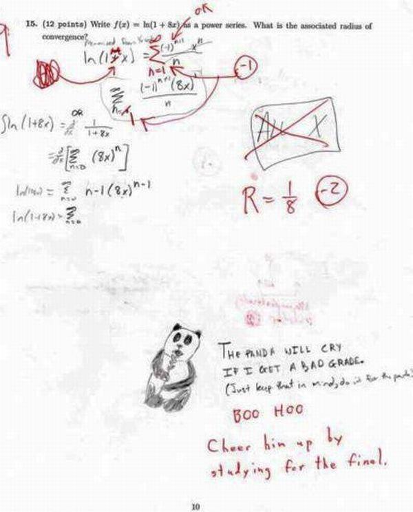 Funny exam (30 pics)
