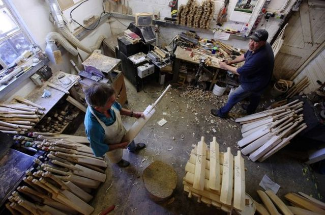 How cricket bats are carved from willow wood? (19 pics)