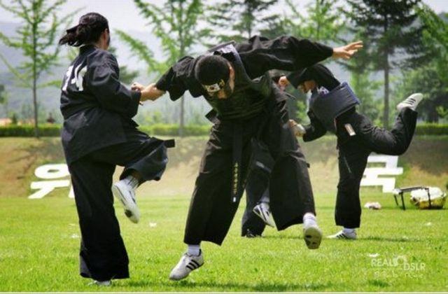 Karate girls in South Korea (9 pics)