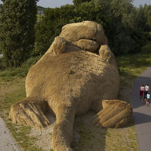 Construction of a giant beaver in Belarus (16 pics)
