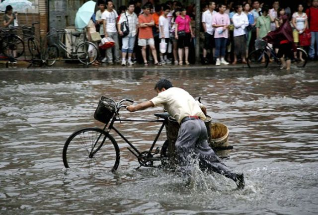Wherever you are on Earth, bicycle is a means of transport that is still highly appreciated (22 pics)