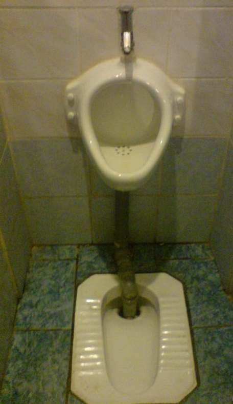 Toilets can be different (103 pics)
