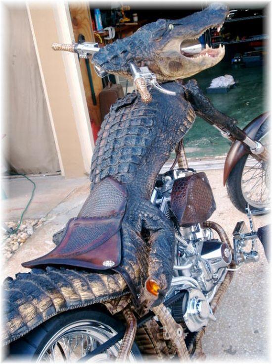 Unusual bike! (3 pics)
