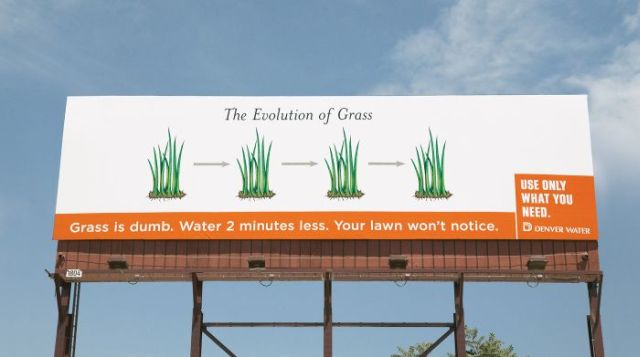 Use only what you need. Grass is dumb! (4 pics)