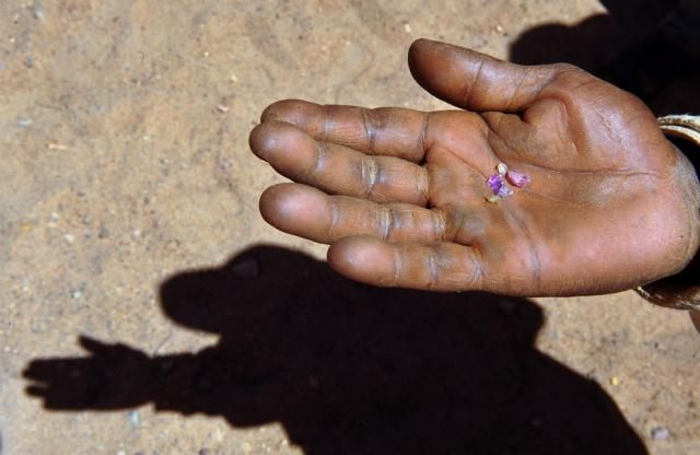 The extraction of sapphires in Madagascar (25 pics)