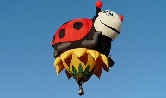 Incredible hot air balloons (12 pics)