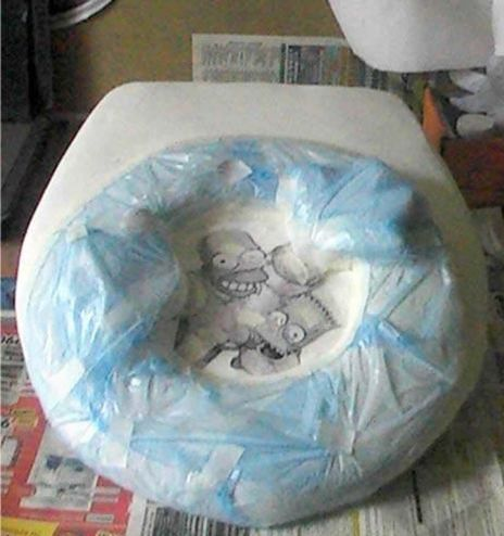 Unusual toilet lid (22 pics)