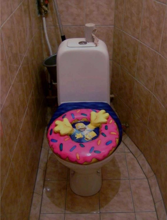 Unusual toilet lid (22 pics)