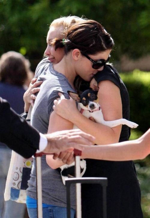Ashley Greene meets with her friends (17 pics)