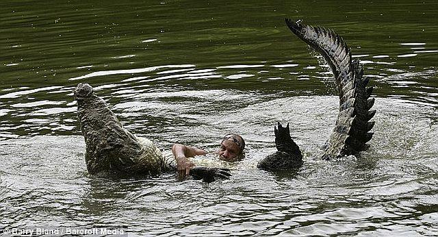 Incredible friendship between a crocodile and a human (4 pics)