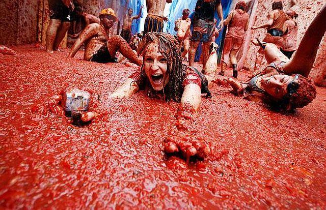 Tomato mess (27 pics)