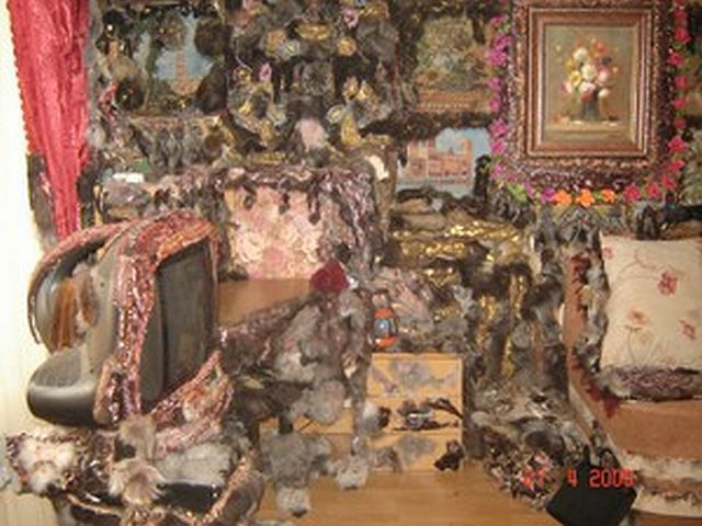 'Glamorous' apartment (21 pics)