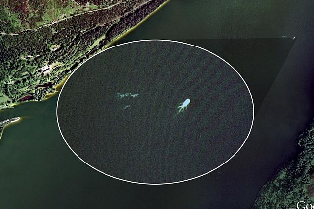 The Loch Ness Monster spotted by Google Earth? (15 pics)
