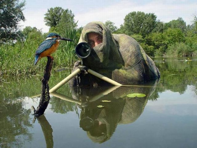 These amusing photographers (52 pics)