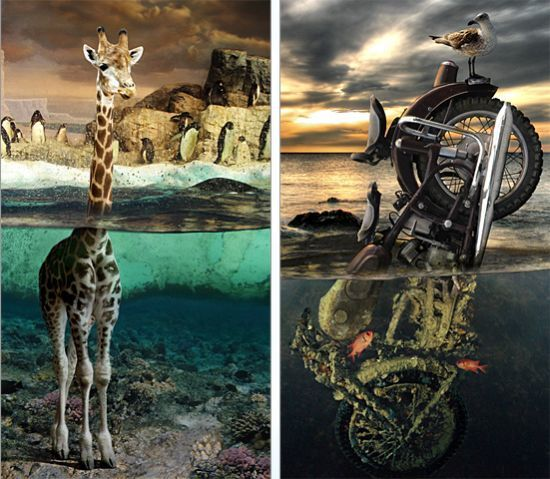Photo manipulation is just great (52 pics)
