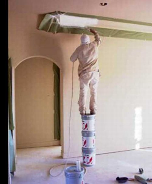 The best experts in safety (36 pics)