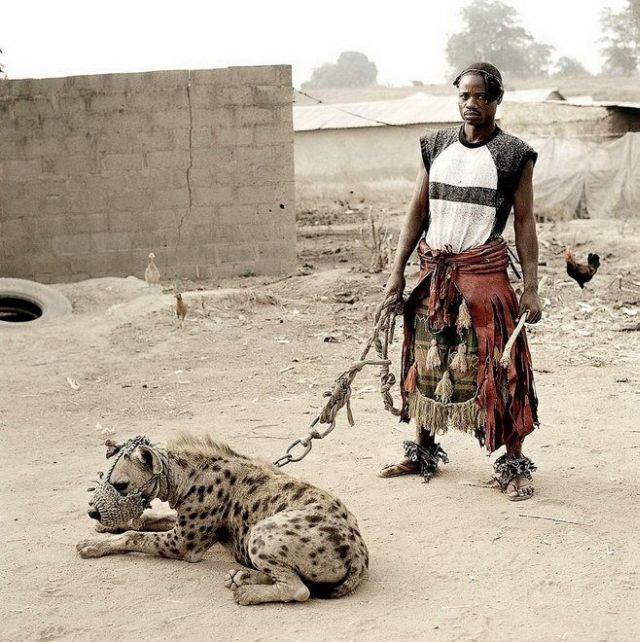 What do they have as pets in Africa (14 pics)