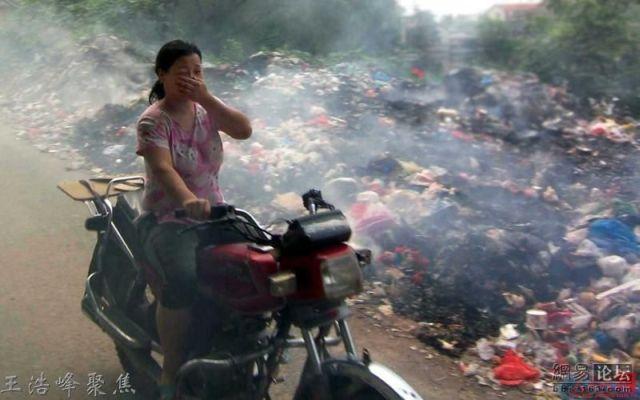 Horrible dumpster smell (13 pics)