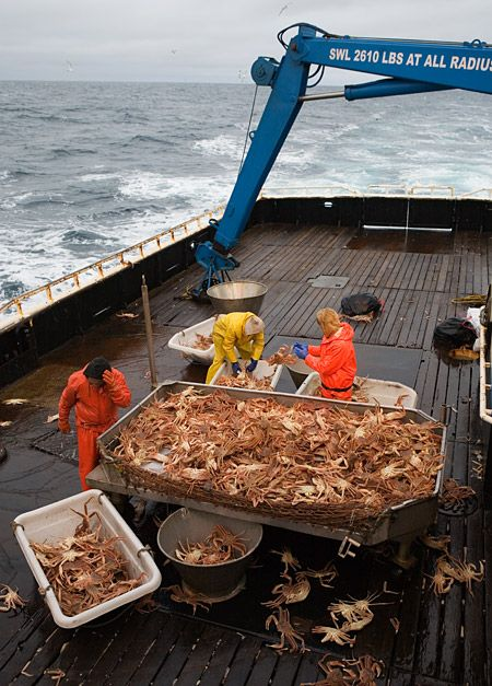 What is it like to be an Alaskan fisherman? (40 pics)